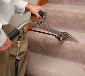 carpet cleaning service mackay